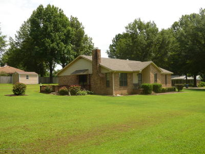 Horn Lake Single Family Home For Sale: 3576 Nickalus Drive
