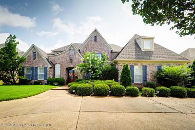 Desoto County Single Family Home For Sale: 6394 Shenandoah Lane