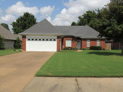 Olive Branch MS Single Family Home For Sale: $164,900