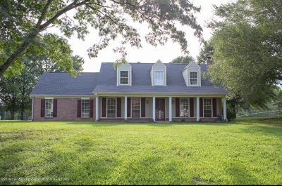 Hernando MS Single Family Home For Sale: $272,900