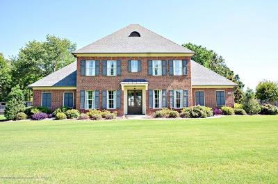 Southaven MS Single Family Home For Sale: $425,000