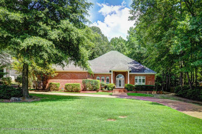 Olive Branch MS Single Family Home For Sale: $449,900