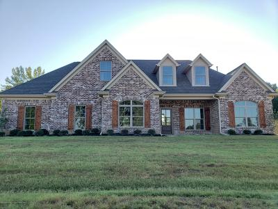 Tate County Single Family Home For Sale: 208 Eagle View Drive
