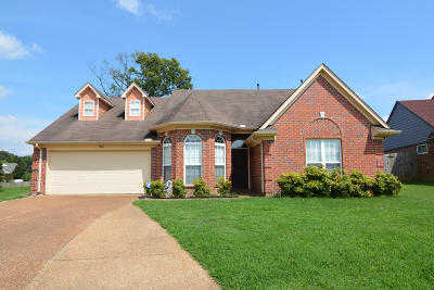 Walls Single Family Home Active/Contingent: 7482 Eleanor Cove