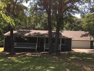 Olive Branch Single Family Home For Sale: 9101 Byhalia Road