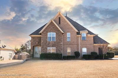 Olive Branch Single Family Home For Sale: 4919 Coleman Road