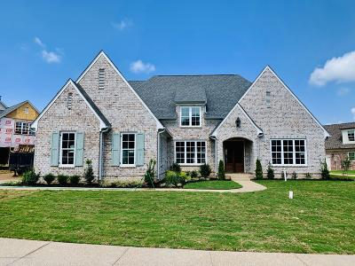 Olive Branch Single Family Home For Sale: 4235 S Lundy