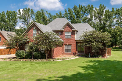 Olive Branch Single Family Home For Sale: 9610 Austin Drive