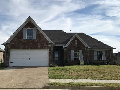 Hernando MS Single Family Home For Sale: $238,900