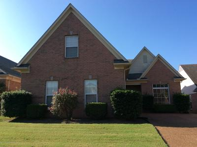 Southaven MS Single Family Home For Sale: $175,000
