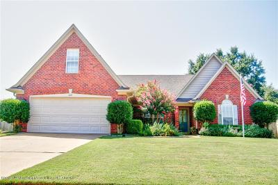 Southaven Single Family Home For Sale: 1845 Greencliff Drive