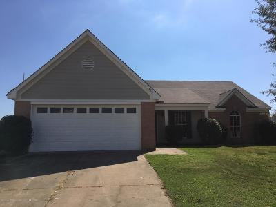 Horn Lake Single Family Home For Sale: 4241 Meadow Creek Drive