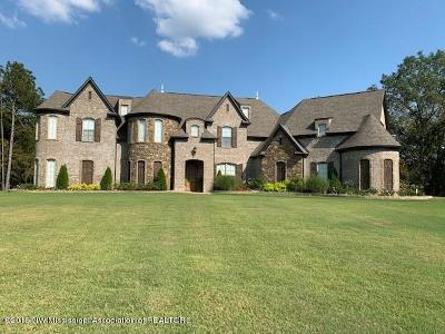 Olive Branch MS Single Family Home For Sale: $650,000