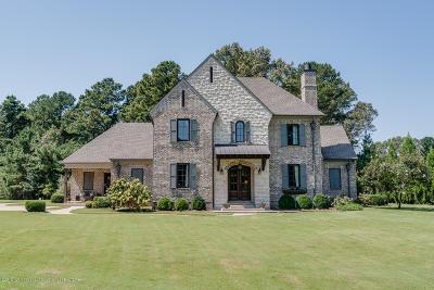 Hernando MS Single Family Home For Sale: $649,000