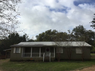 Wilkinson County Single Family Home For Sale: 10284 Hwy 24 East