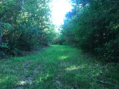 Liberty Residential Lots & Land For Sale: Tbd Ms Hwy 567