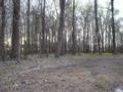 Woodville Residential Lots & Land For Sale: Pecan Grove
