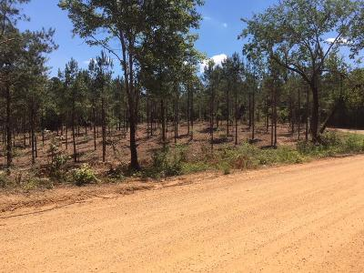 Amite County Residential Lots & Land For Sale: 1199 Macedonia Church Rd