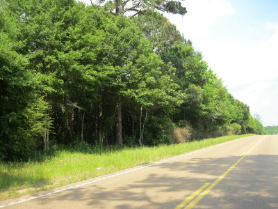 Wilkinson County Residential Lots & Land For Sale: Lot 8 Hwy 24