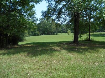 Adams County Residential Lots & Land For Sale: 9 Palmer Drive