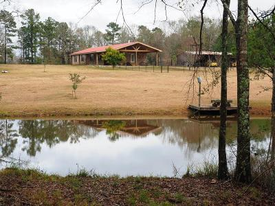 Amite County Single Family Home For Sale: 1350 Brabham Road