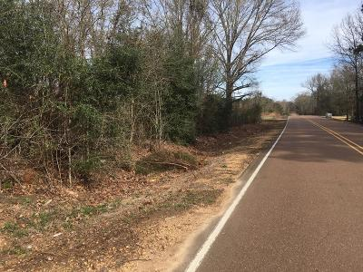 Amite County Residential Lots & Land For Sale: 2750 Georgia Pacific Road No. 2