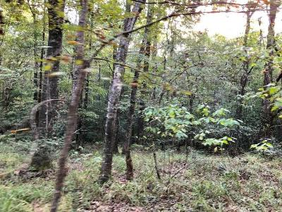 Woodville Residential Lots & Land For Sale: Lot 2 Hwy 563