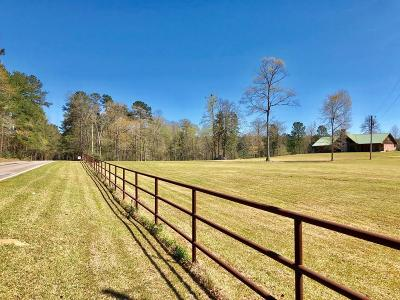 Amite County Single Family Home For Sale: 3336 Busy Corner Road
