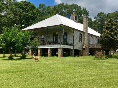 Amite County Single Family Home For Sale: 2432 McClendon Road