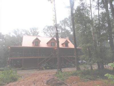 Amite County Single Family Home For Sale: 4087 Judge