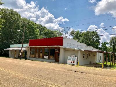 Amite County Commercial For Sale: 320 Main St