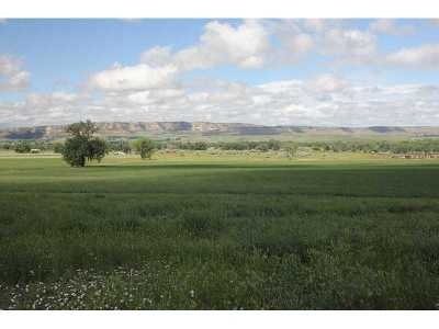 Farm & Ranch For Sale: 449 Edgar Fromberg Road-Two Bear Ranch