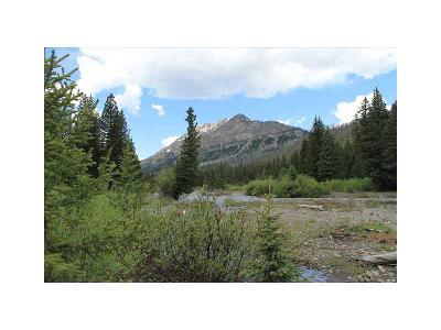 Residential Lots & Land For Sale: Bannock Trail