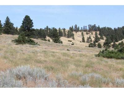 Bridger Residential Lots & Land For Sale: Tr 5 Eagle Point Lane