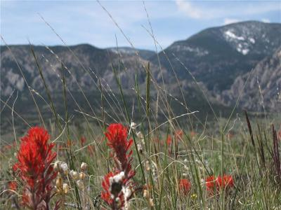 Red Lodge MT Residential Lots & Land For Sale: $39,900
