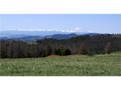 Townsend MT Residential Lots & Land For Sale: $699,900