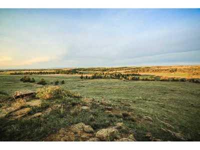 Billings Farm & Ranch For Sale: 2139 Alkali Creek Road