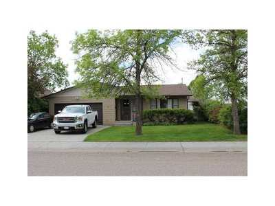 Single Family Home For Sale: 712 S 2nd