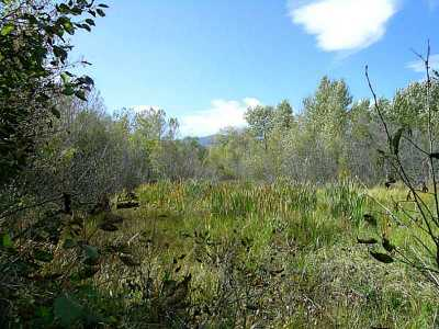 Red Lodge Residential Lots & Land For Sale: Tr 1a-1a Us Highway 212
