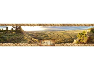 Billings Farm & Ranch For Sale: Charter Ranch Highway 87