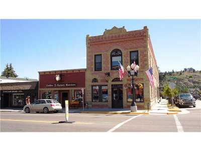 Red Lodge Commercial For Sale: 24 Unit 1 & 2 S Broadway Avenue