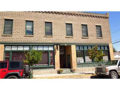 Red Lodge Commercial For Sale: 24 Unit 3 S Broadway Avenue