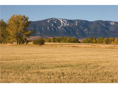 Red Lodge MT Residential Lots & Land For Sale: $129,900