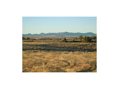 Residential Lots & Land For Sale: 99 Beartooth Vista