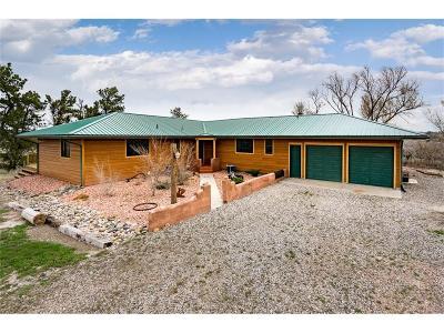Single Family Home For Sale: 7930 Buffalo Creek Road