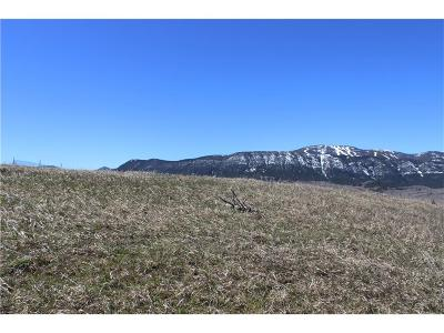 Red Lodge Residential Lots & Land For Sale: Lot 2 Palisade Basin Ranches