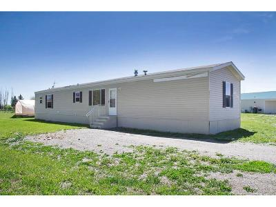 Shepherd Single Family Home For Sale: 6125 Severance Road