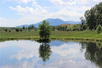 Red Lodge MT Farm & Ranch For Sale: $1,480,000