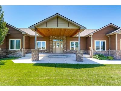 Park City Single Family Home For Sale: 526 Cemetery Road