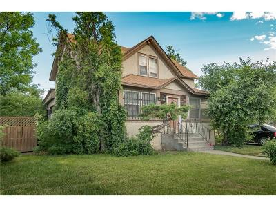 Single Family Home For Sale: 32 Grand Avenue
